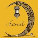cropped-logo-ecommerce-hanùl-borse-dipinte.jpg