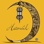 logo Hanùl Style