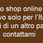 shop online borse dipinte